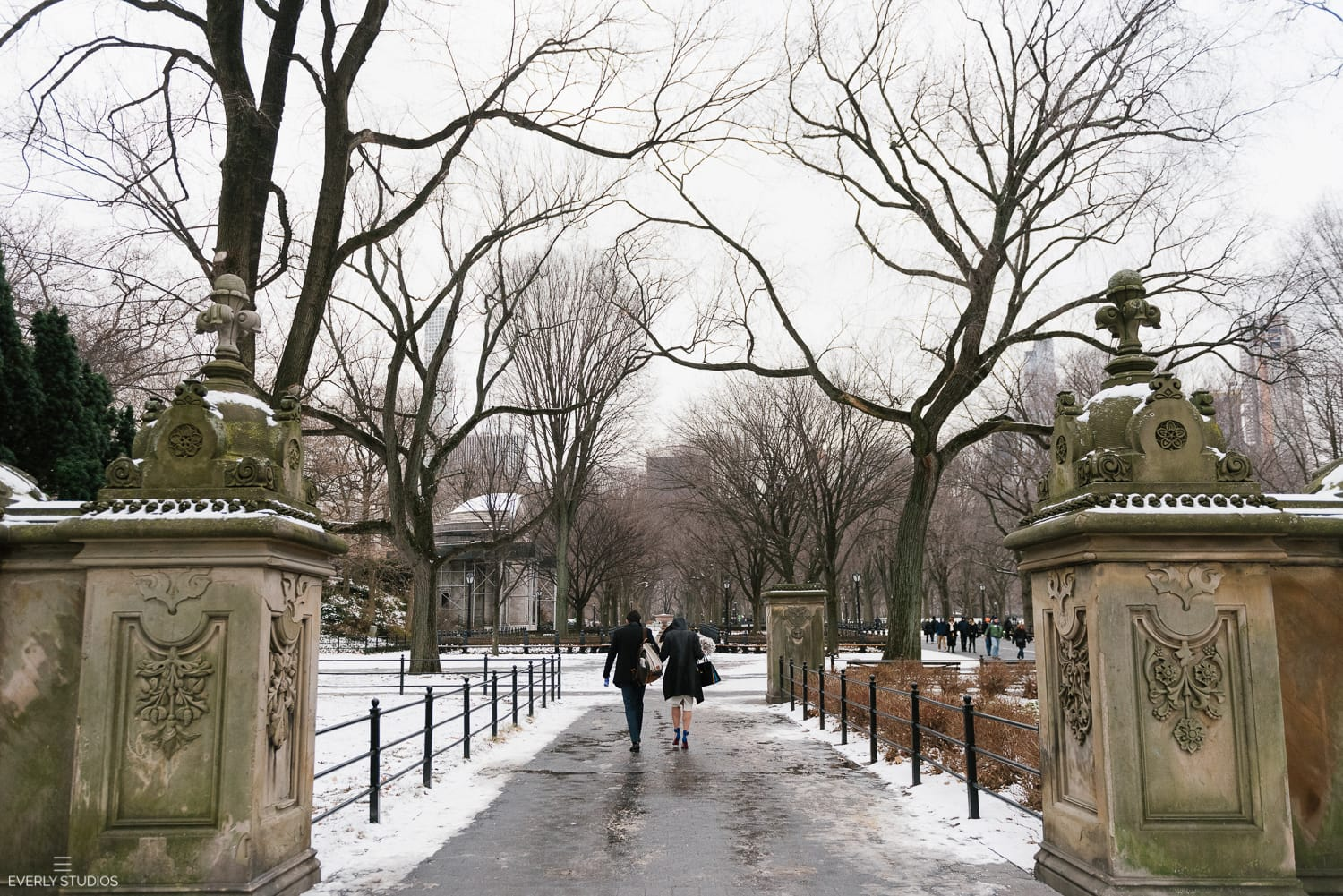 Winter central park wedding new york city hall elopement for Winter garden studios